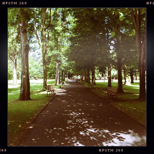 Avilés Ferrera Park