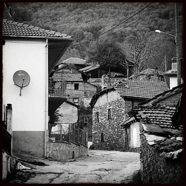 Alona Florina Snapseed Blackandwhite xperia acros