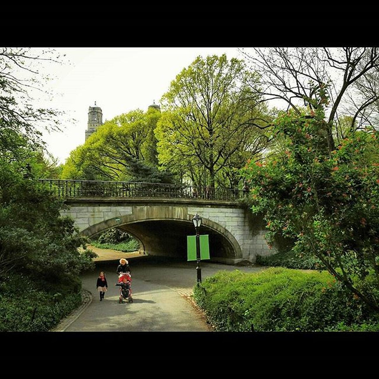 Winterdale Arch in Central Park. : : Olmsted Winterdalearch Centralparknyc CentralPark NYC Newyork Newyorkcity Newyorkcitythroughmyeyes Streetshooter Streetphotography Streetphoto Documentaryphoto Documentaryphotography Urbanexploration Urbanhike Streetscape Nystreetphotography Urbanlandscape Landscapelovers Landscapephotography Landscapeshooters Shootermag Yetmagazine Subjectivelyobjective Fotoguerrilla way2ill artofvisuals picoftheday PhotoOfTheDay artoftheday