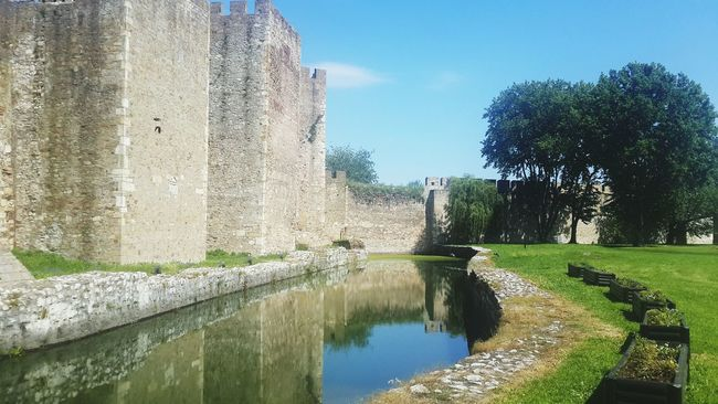 Favourite corner of my Hometown 🌳💚 Smederevo Fortress Danube Castle Walls Green Nature Check This Out Taking Photos Hanging Out Enjoying Life Relaxing Hello World