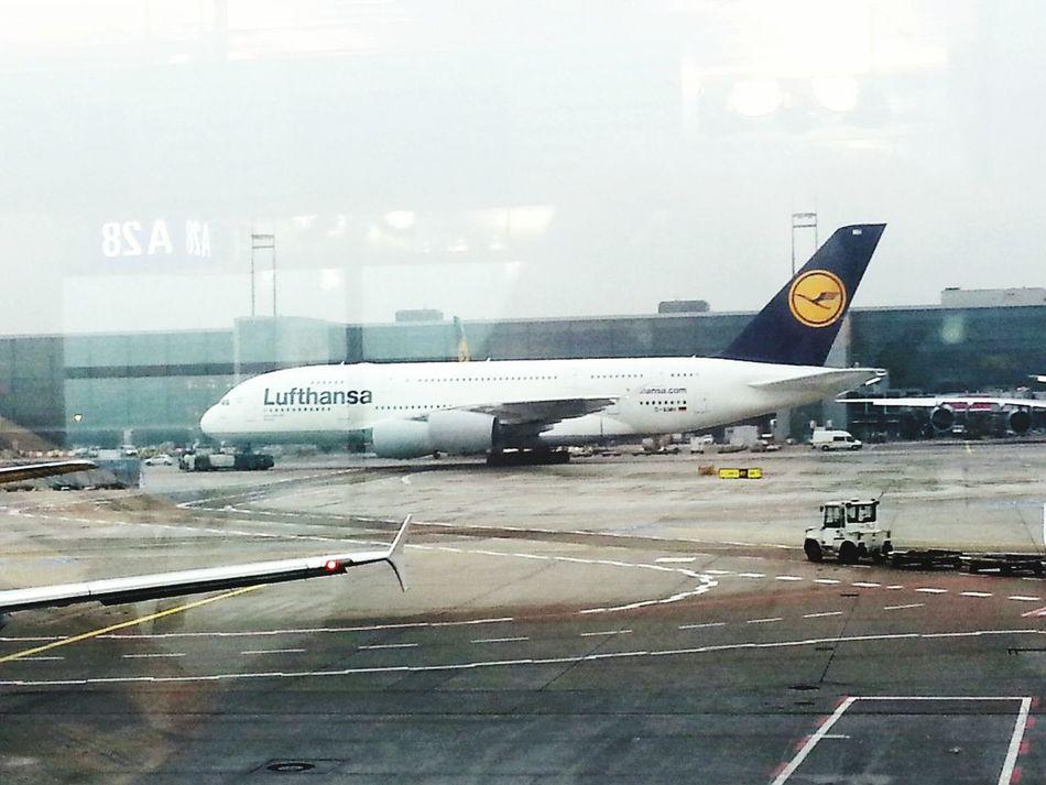 Airplane A380-800 Frankfurt Am Main Airport