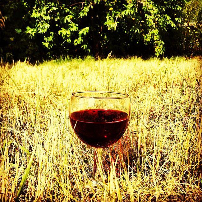 Russianvillage wine redwine