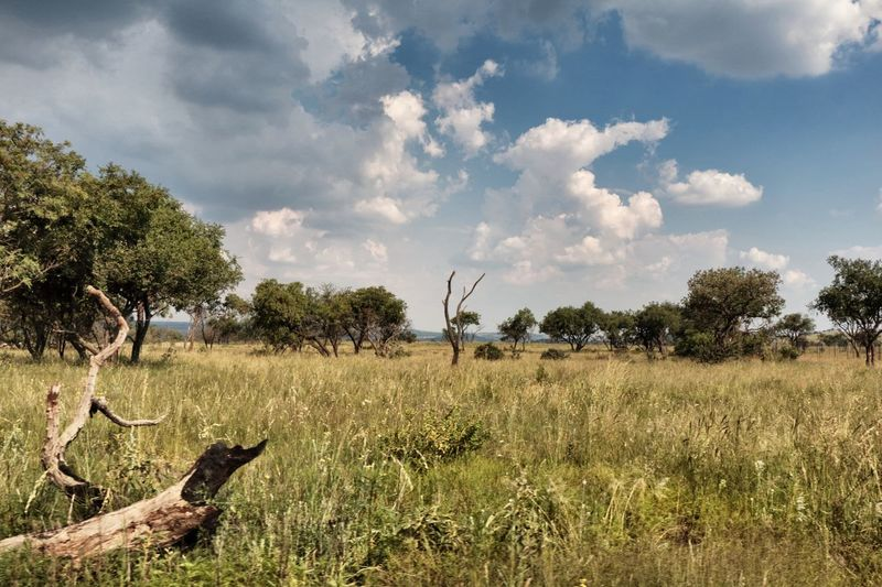Cloud - Sky Field Landscape Nature North West Province Rural Scene South Africa Tranquility
