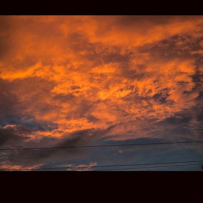 Beautiful sky. Rrhurstphotography Burlington Ontario sunset Reflections Beautiful Storm Overlooking Birds Orange Bluesky Clouds Summer Digitalphotography Iamnikon Nikoncanada Nikonphotography Nikonphotographers Nikonofficialitalia D7000 Digital Nofilter Lovetotakepictures Artgalleryburlington Art Passion latowphotographersguild