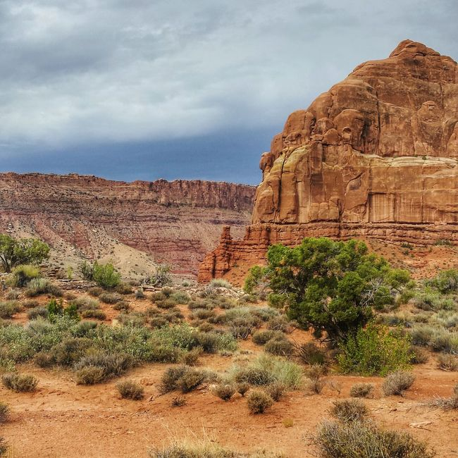 Enjoying Life National Park Day Outdoors Moab  Canyon Canyonlands Utah Sandstone Landscape Cowboy Country Travel Vacation Red Dirt Spire  Sagebrush Heat West Nature Taking Photos