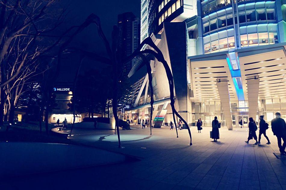 Japan Roppongi Roppongihills Spider 蜘蛛 夜 Nightphotography 六本木 六本木ヒルズ