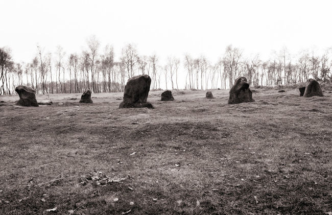 Bare Tree Blackandwhite Photography Derbyshire Dales Landscape Remote Location Standing Stones Stone Circle Tranquility Tree