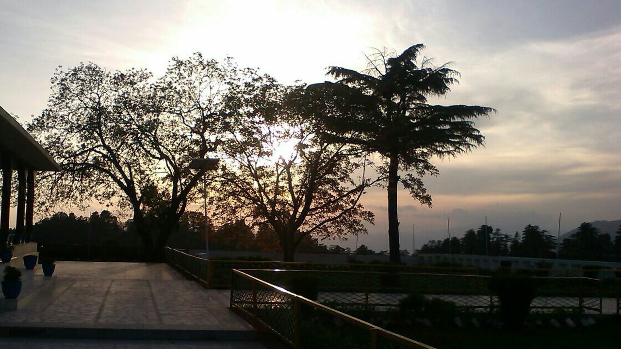 Sunset Sunset Tree Silhouette Outdoors No People Dusky Dusky Sky original no edit india