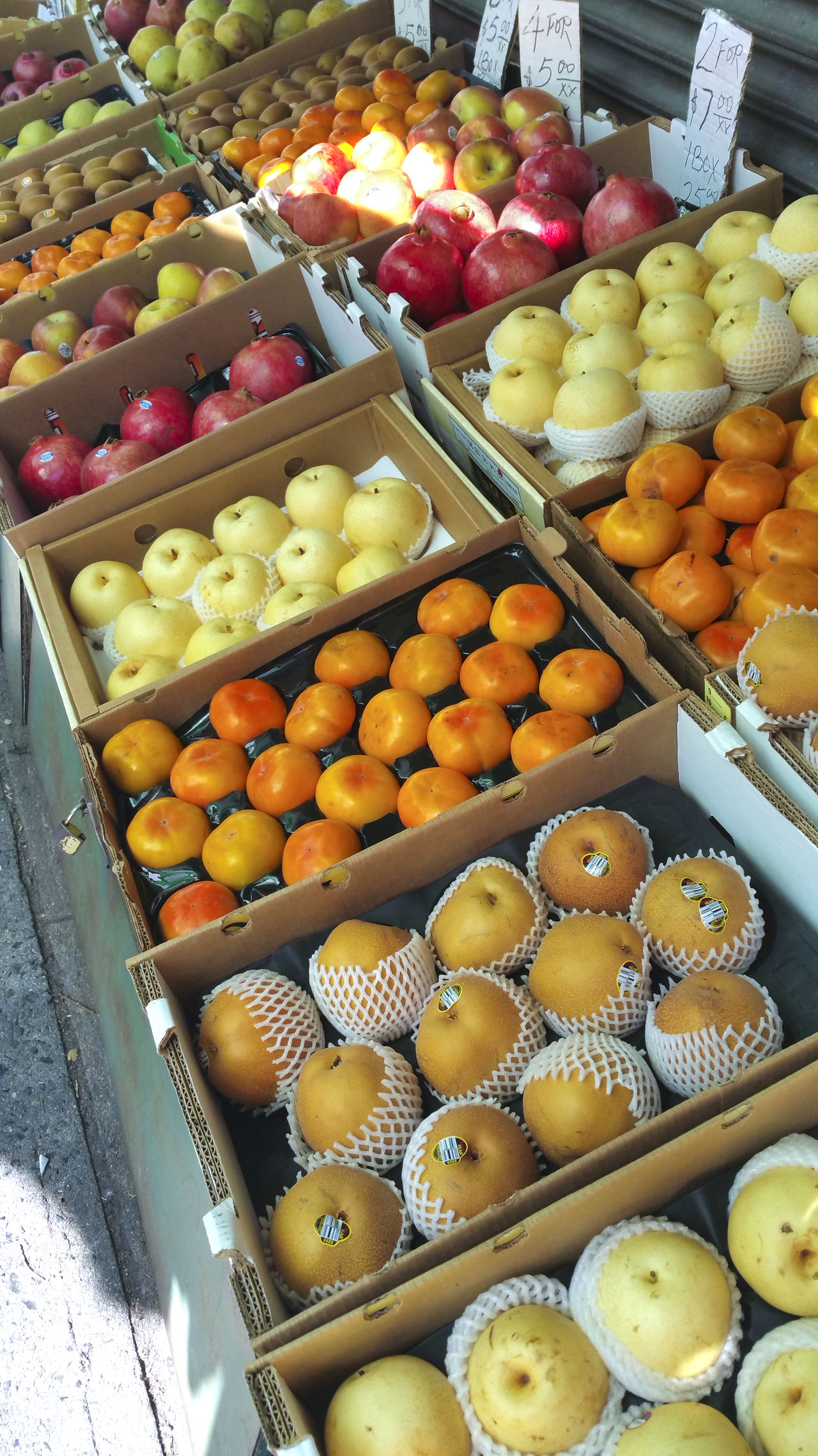 exotic fruit for sale at an outdoor market in Chinatown, New York Abundance Arrangement Chinatown; Chinese Food; Color Photograph; Color Photography; Different; Display; Exotic; Farmer's Market; Fruit; N.Y.; New York City; Nutritious; NY; Organic; Still Life; Unusual; Outdoors; Food; Market Choice Food And Drink Freshness Fruit Healthy Eating Large Group Of Objects Still Life Variation