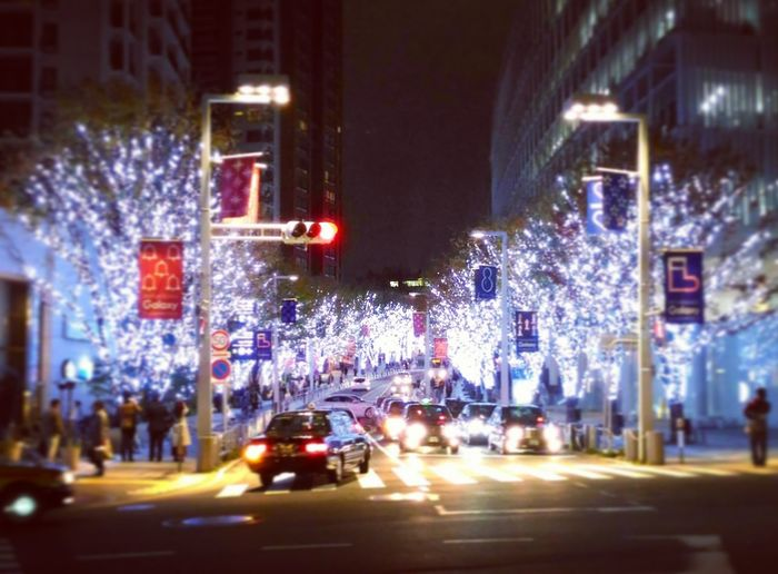 Roppongi Minatoku Tokyo,Japan Night Lights Traffic Lights Cars Tree Illumination Christmastime Christmas Lights Urbanphotography