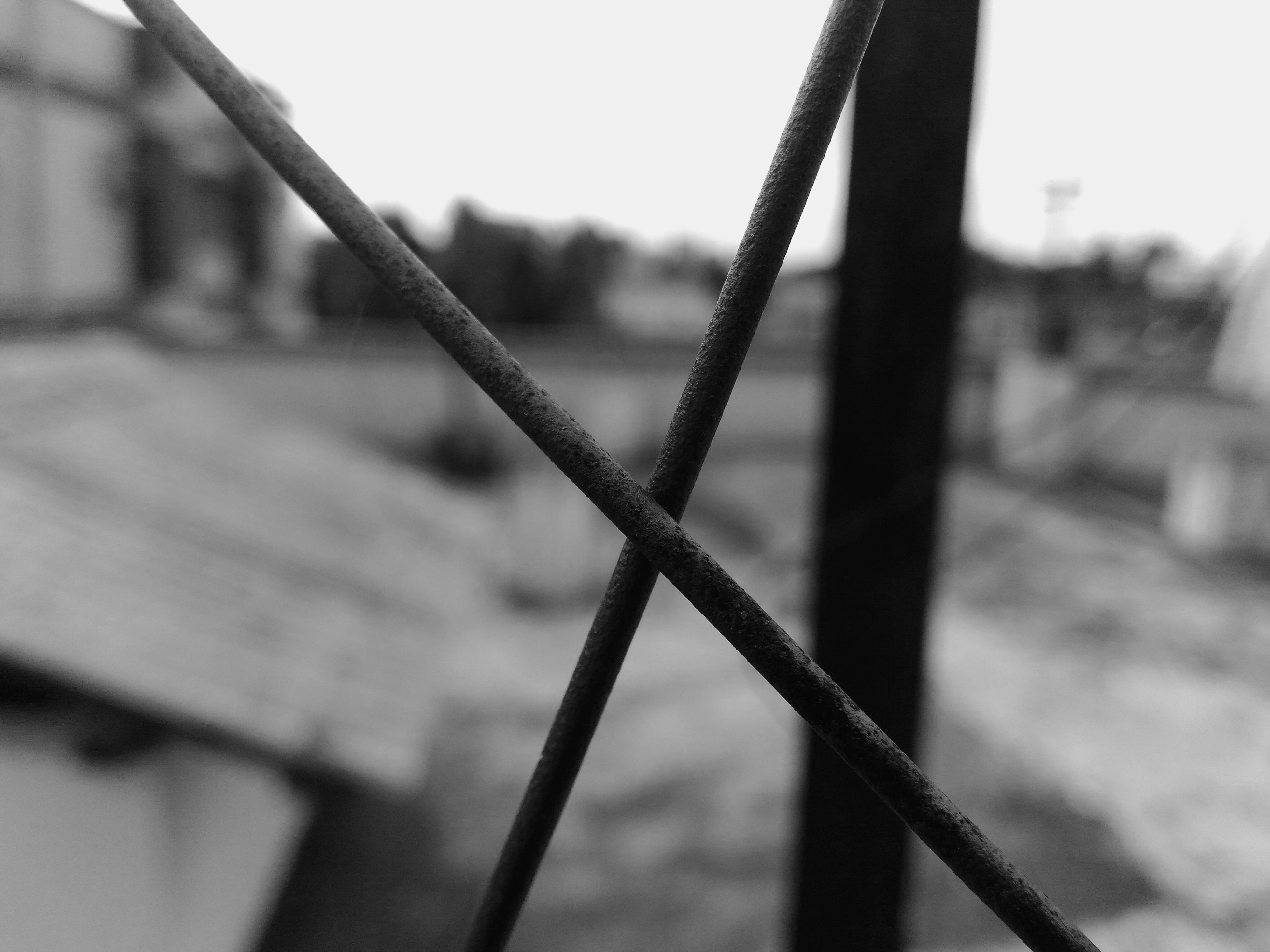 fence, focus on foreground, close-up, protection, metal, day, no people, outdoors