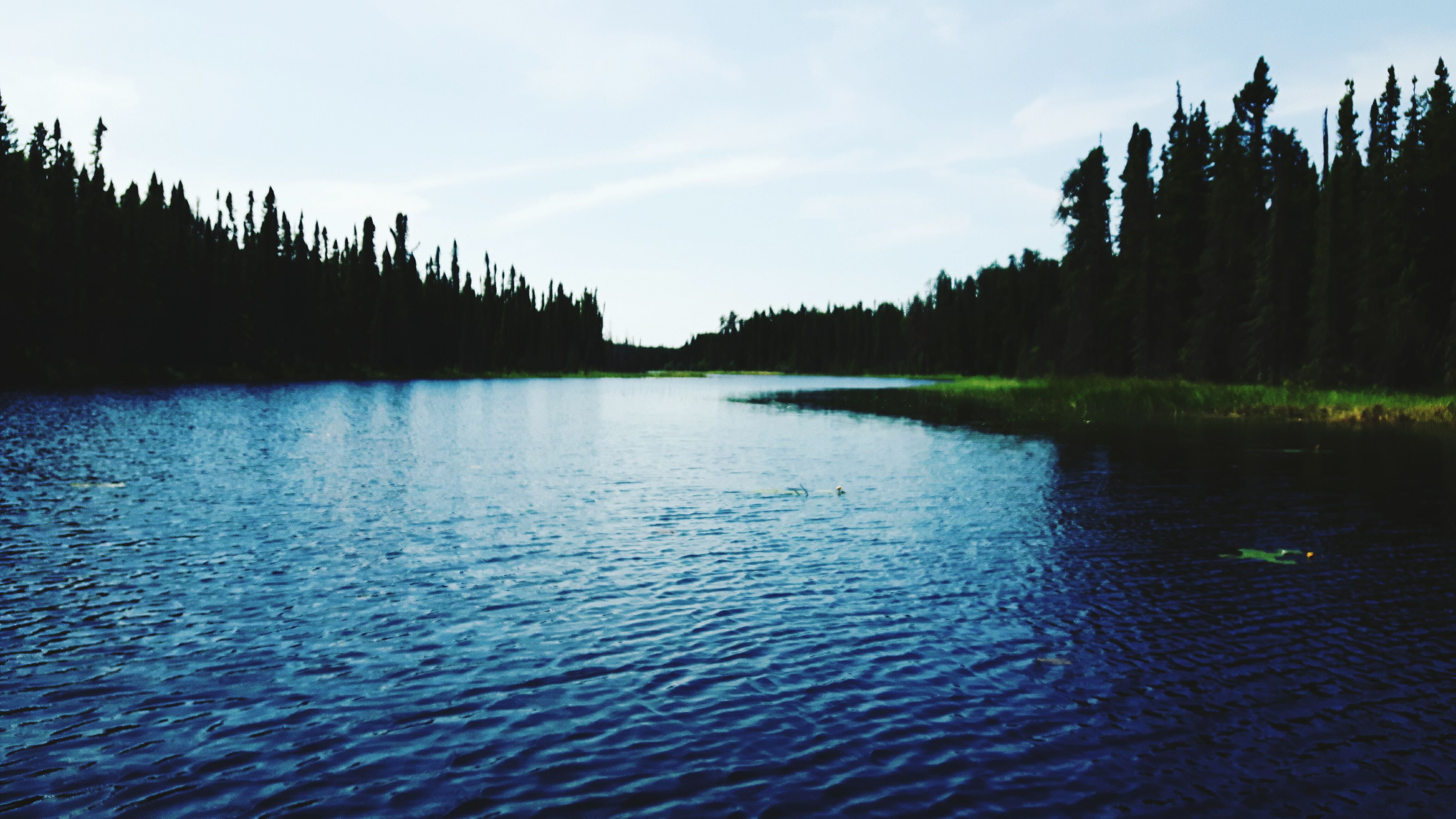 water, nature, tranquil scene, tranquility, beauty in nature, scenics, sky, no people, tree, rippled, lake, outdoors, day