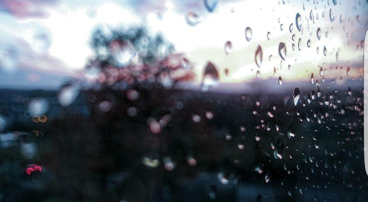 Lineart LinearShot Raindrops Winter Trees Sky RedSky Sunrise Nostalgic