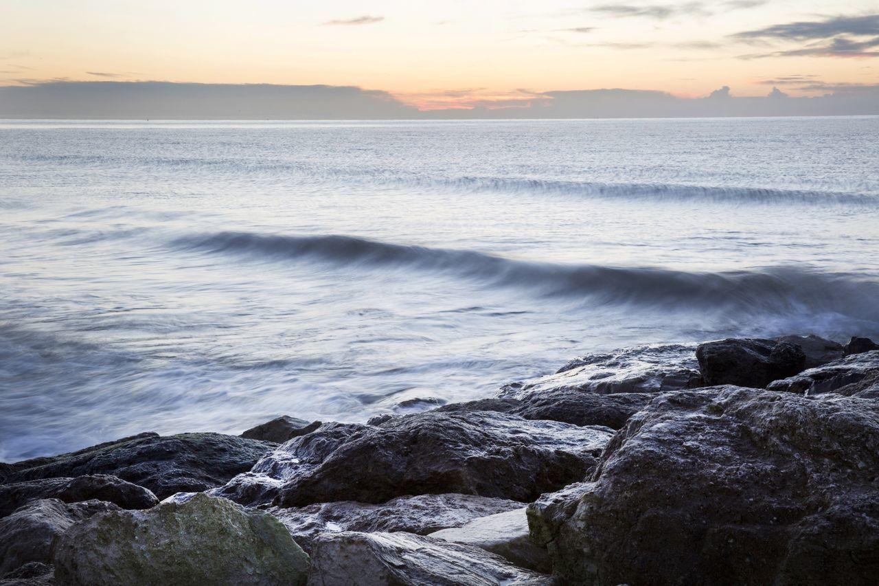 Beautiful stock photos of sydney, Beauty In Nature, Idyllic, Motion, Nature