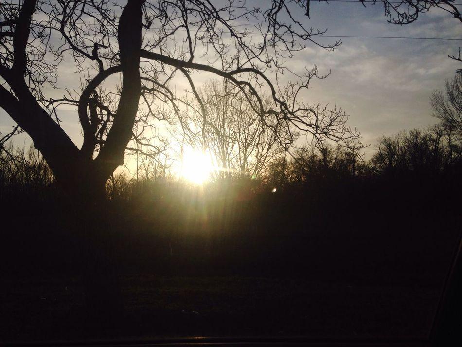 Sun ☀ Sun Light Sun Goes Down Tree🌳🍂🍃🍁 Sunset #sun #clouds #skylovers #sky #nature #beautifulinnature #naturalbeauty #photography #landscape Sky