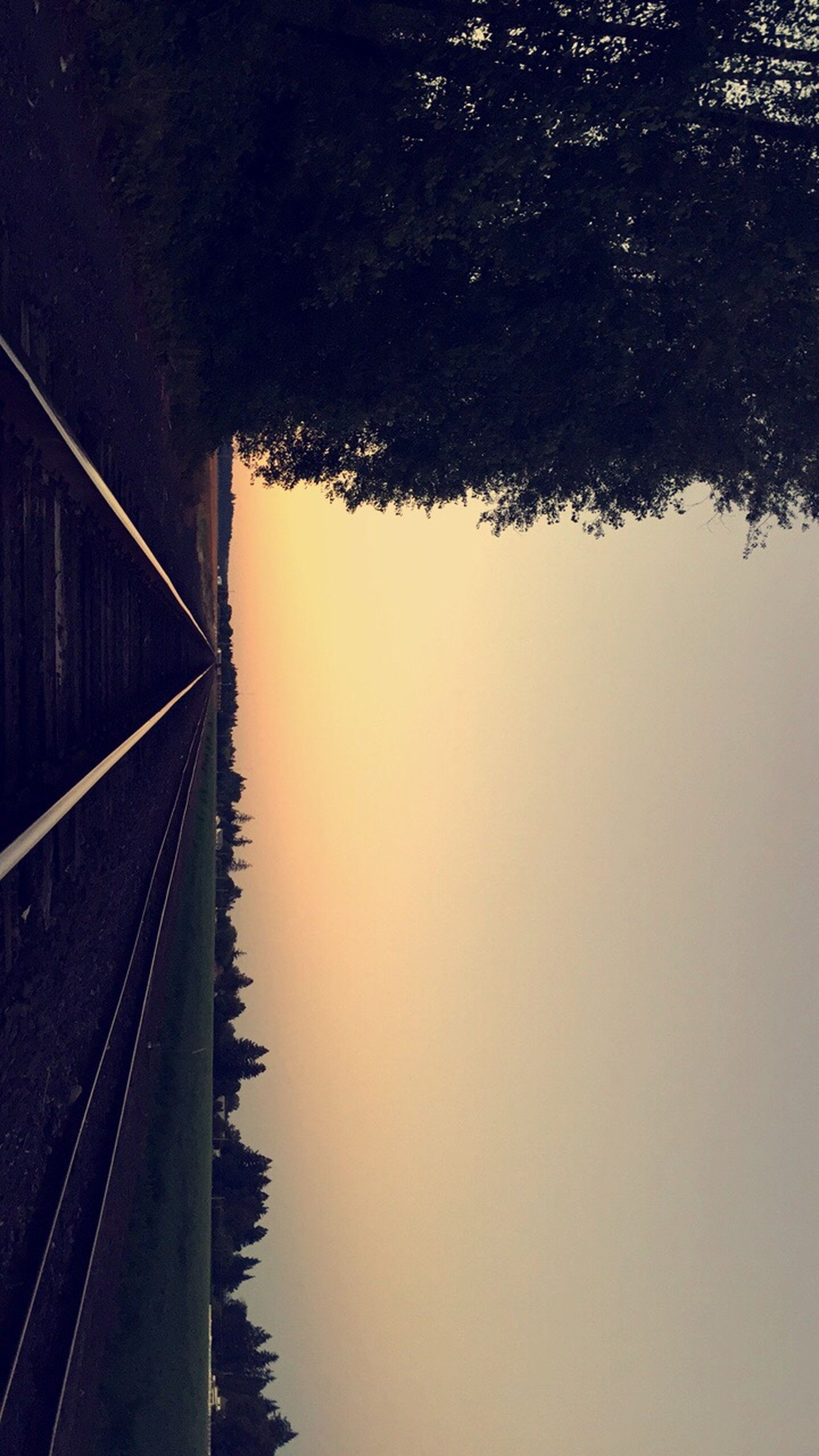 tree, nature, rail transportation, railroad track, transportation, no people, outdoors, water, tranquil scene, river, day, growth, tranquility, beauty in nature, scenics, sky, landscape, sunset, clear sky