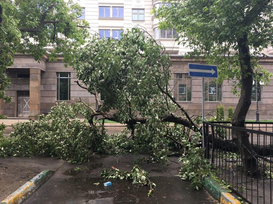 ветер сильный ужас Погода Москва май2017