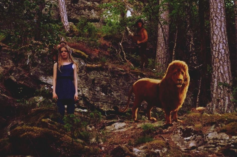 Aslan said: if you are going to the other side. You will never come back. Mouse: I have always want to be on your side Aslan, Even if there's no Aslan to lead it Aslan Narnia ❤ Memorial
