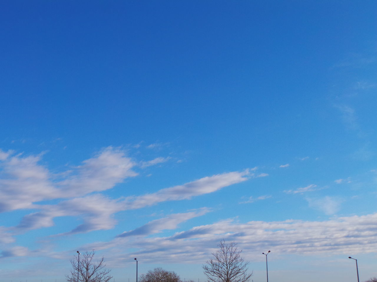 blue, low angle view, sky, beauty in nature, nature, tranquility, day, tree, no people, scenics, outdoors, tranquil scene, contrail, vapor trail