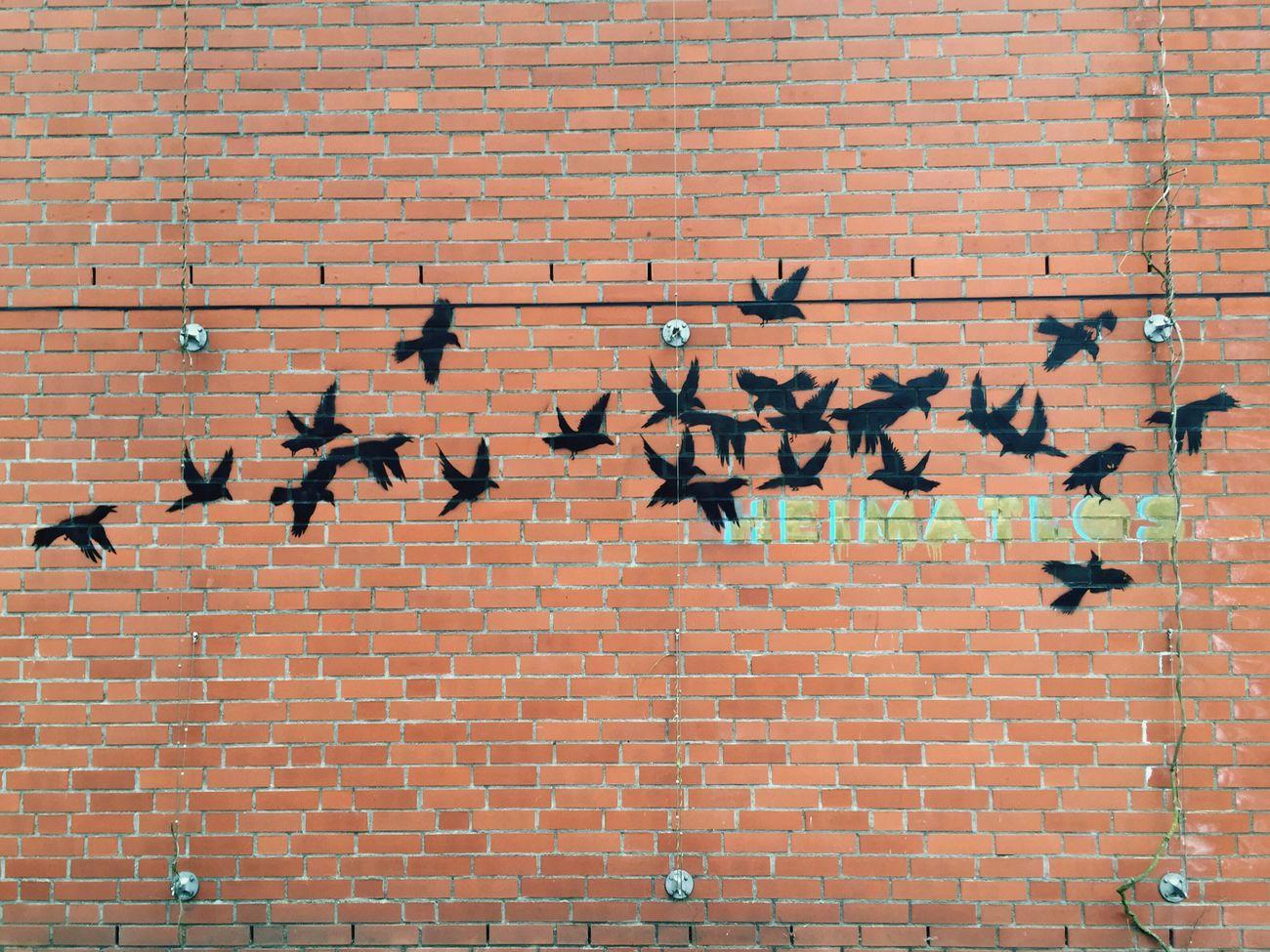 Heimat Heimatlos Bremen Streetart Stencil Hometown Homeless Birds