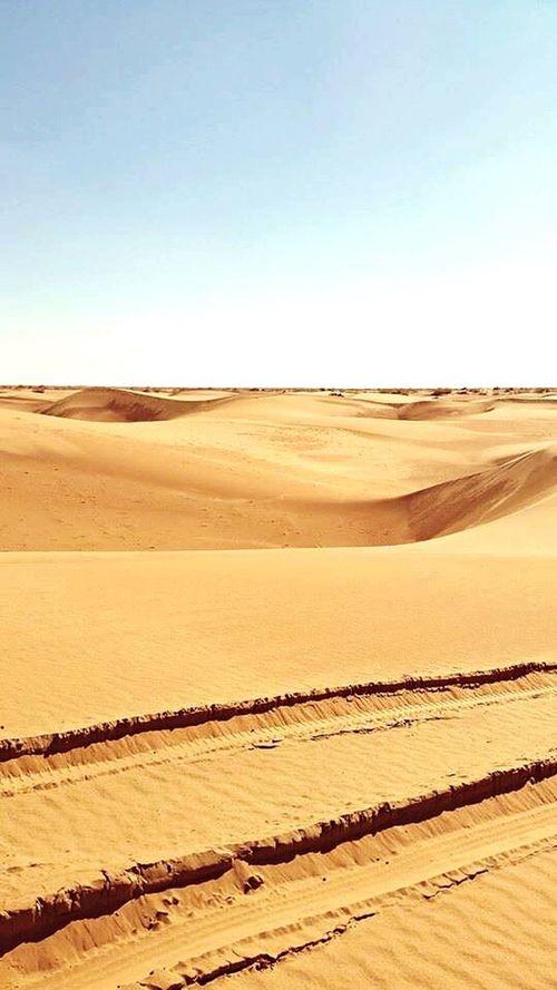 Desert Deserts Around The World 🌎 Desert Landscape Desert Beauty Desert Life