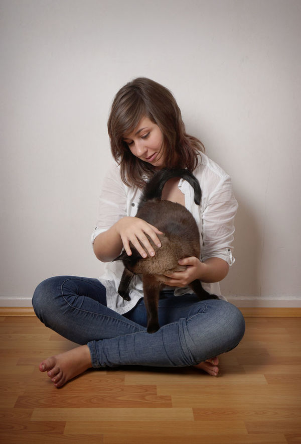 Cat Girl Holding Indoors  Pet Real People Relaxing Sitting Stroking Young Women