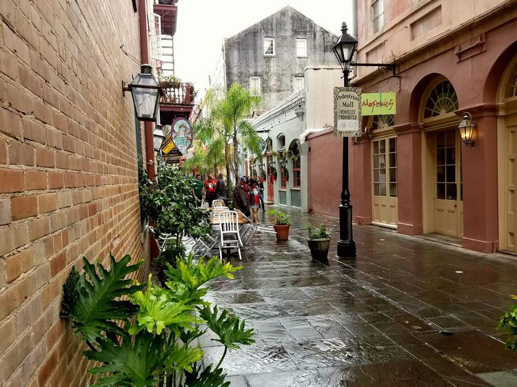 New Orleans Pedestrian Mall French Quarter Architecture Building Exterior Built Structure Outdoors Plant Women People Day Adult Water Adults Only