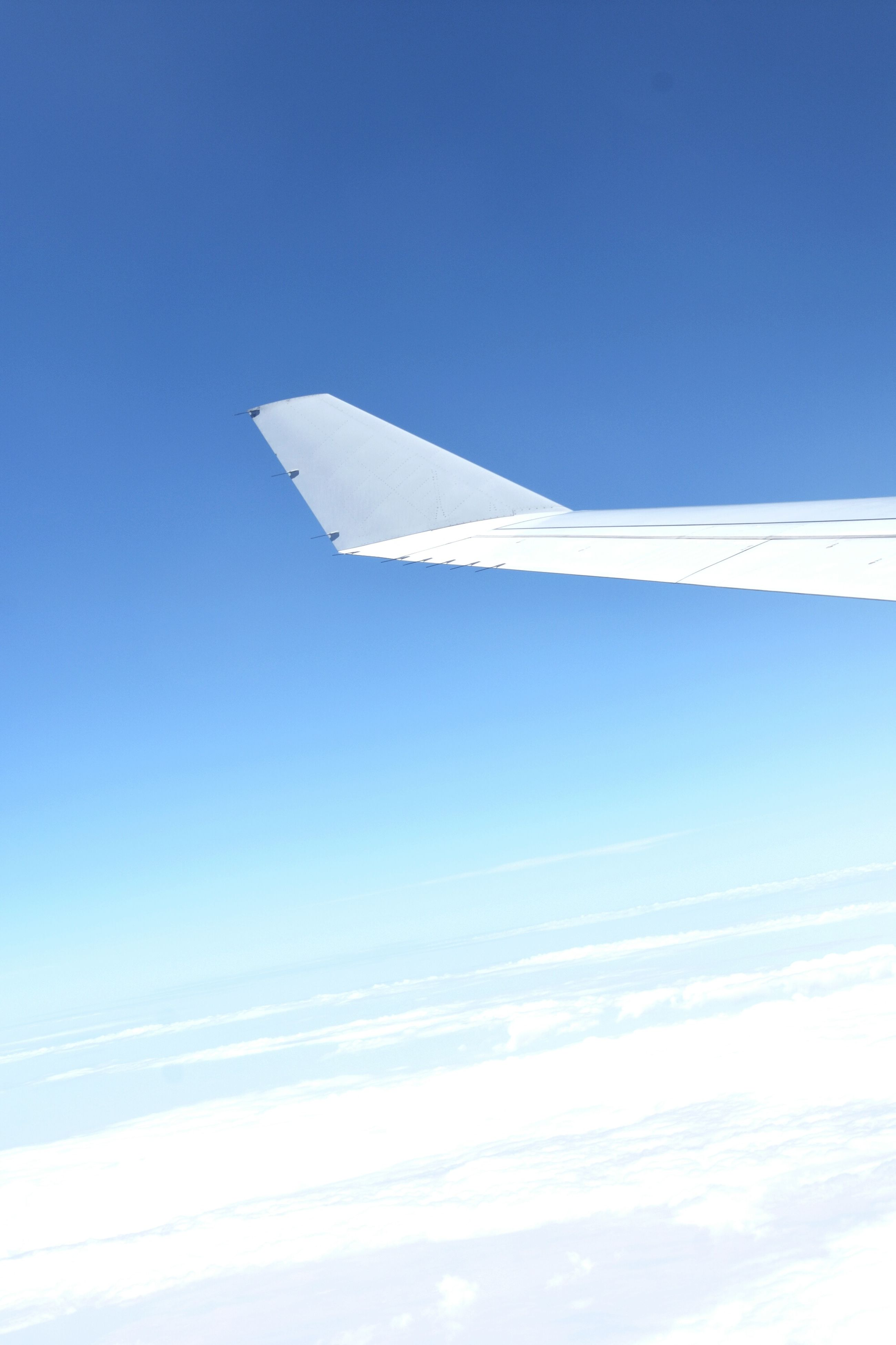 airplane, sky, blue, cloud - sky, flying, no people, air vehicle, low angle view, day, outdoors, nature, beauty in nature, airplane wing