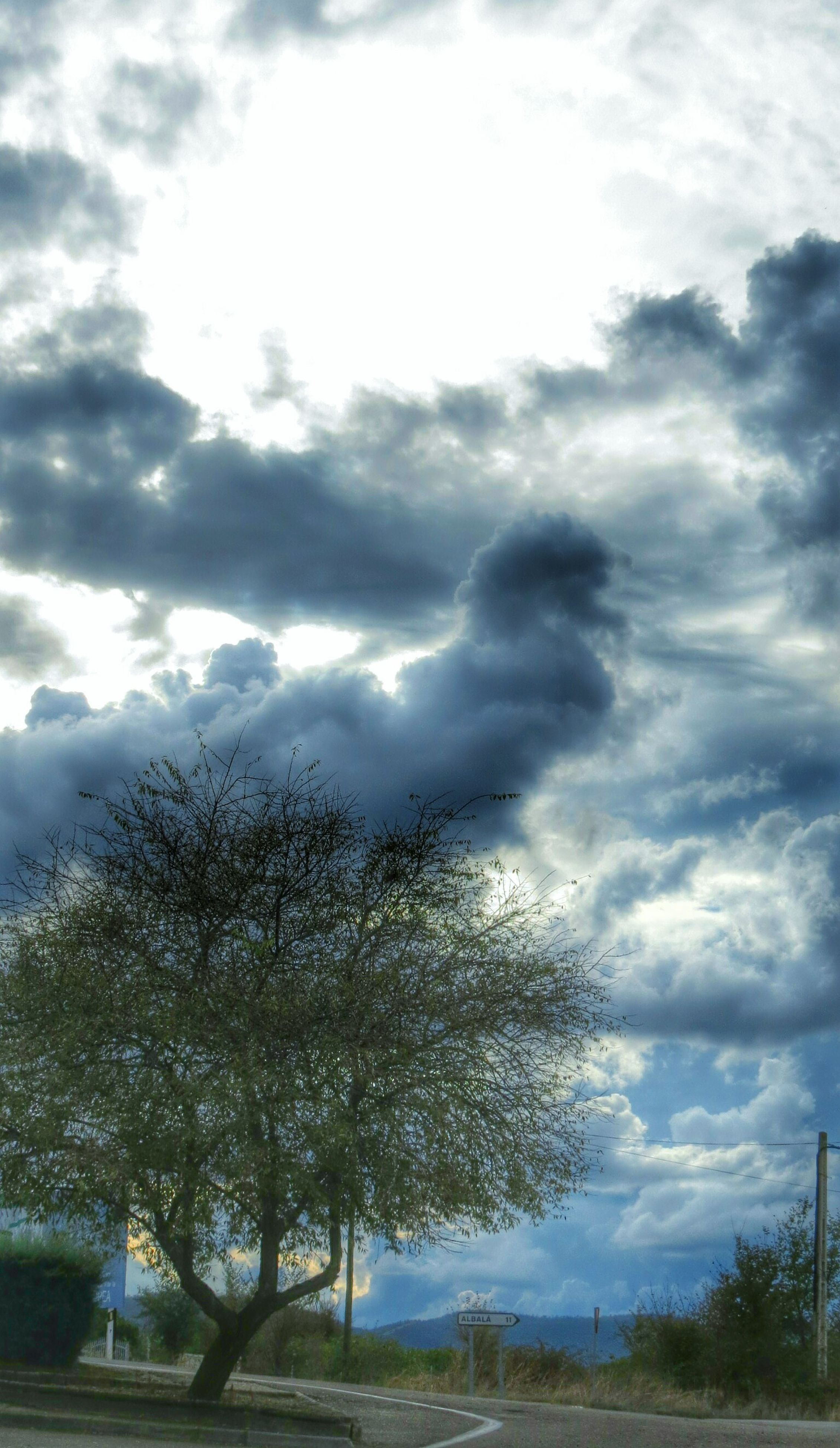 sky, tree, cloud - sky, cloudy, cloud, tranquility, nature, tranquil scene, beauty in nature, scenics, day, growth, road, field, weather, outdoors, sunlight, landscape, no people, transportation