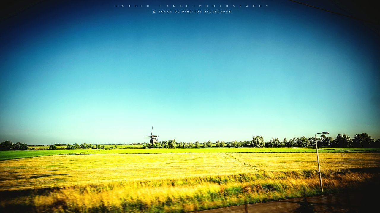 From Amsterdam to Brussels by train Rural Scene Field Clear Sky Landscape Grass Agriculture Wheat Train Trainphotography Train Ride Train Window Train Travel Windmill Amsterdam Brussels Travel Traveling Photography Europe