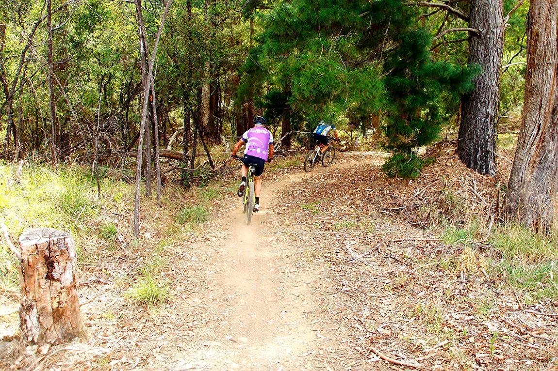 Celebrate Your Ride Bike Trip Bike Ride Bikelife Cyclephotography CyclingTour Cycling Biketrip Mountainbiking Mountainbiker Mountainbiketour MountainBikeTrails Mountainbikelife Mountainbike Bicycle Trip Australia Cyclingholiday Cycling Trip  Biketour