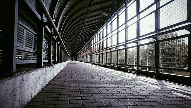 Lines Streetphotography Straightlines Passage линии линейнаяперспектива переход Moscow Moscowcity