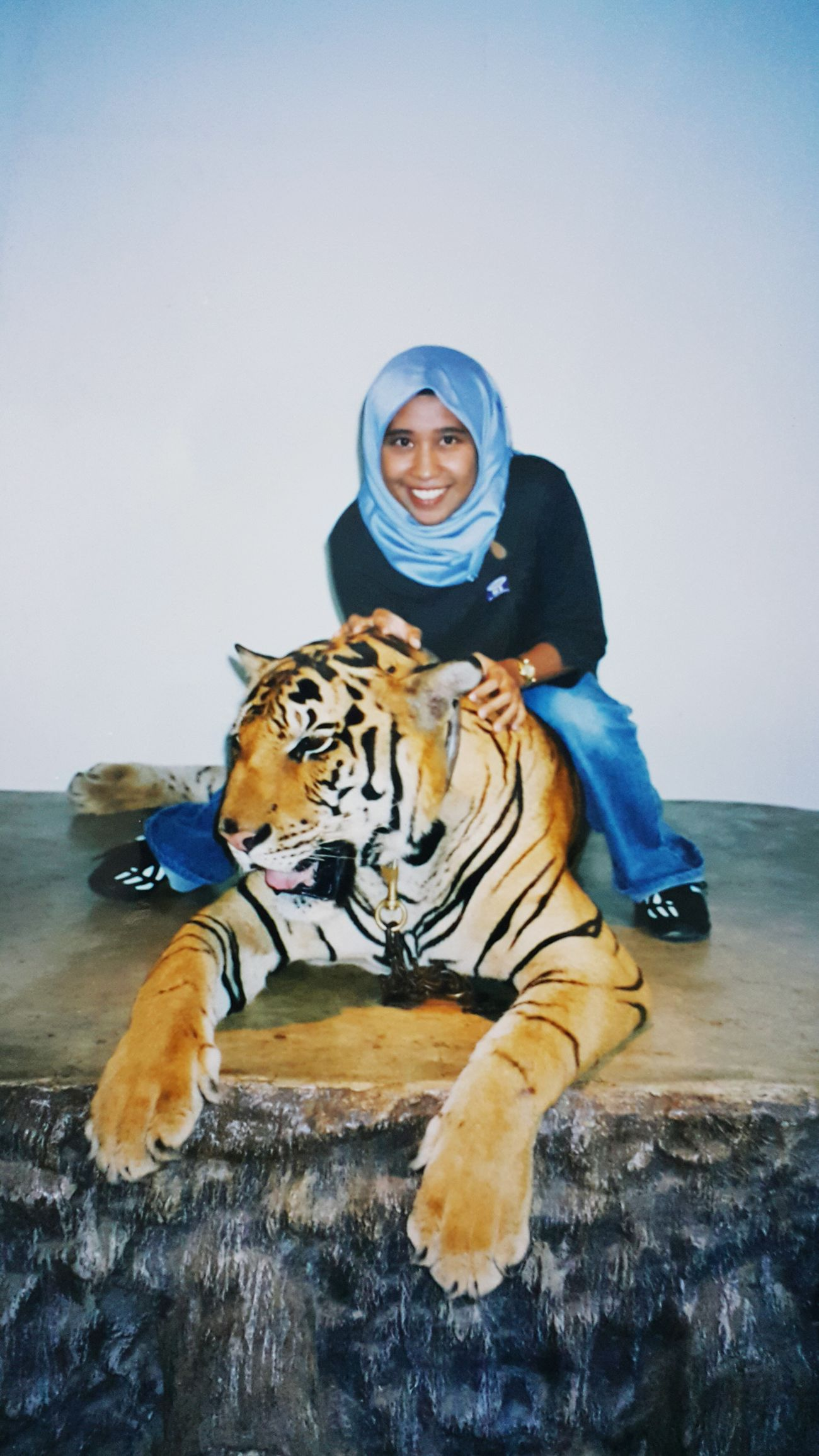 Wow!! Malayantiger Feeling Brave Braveheart Humans And Animals Eye Of The Tiger Tigerlovers Just Me And My Baby
