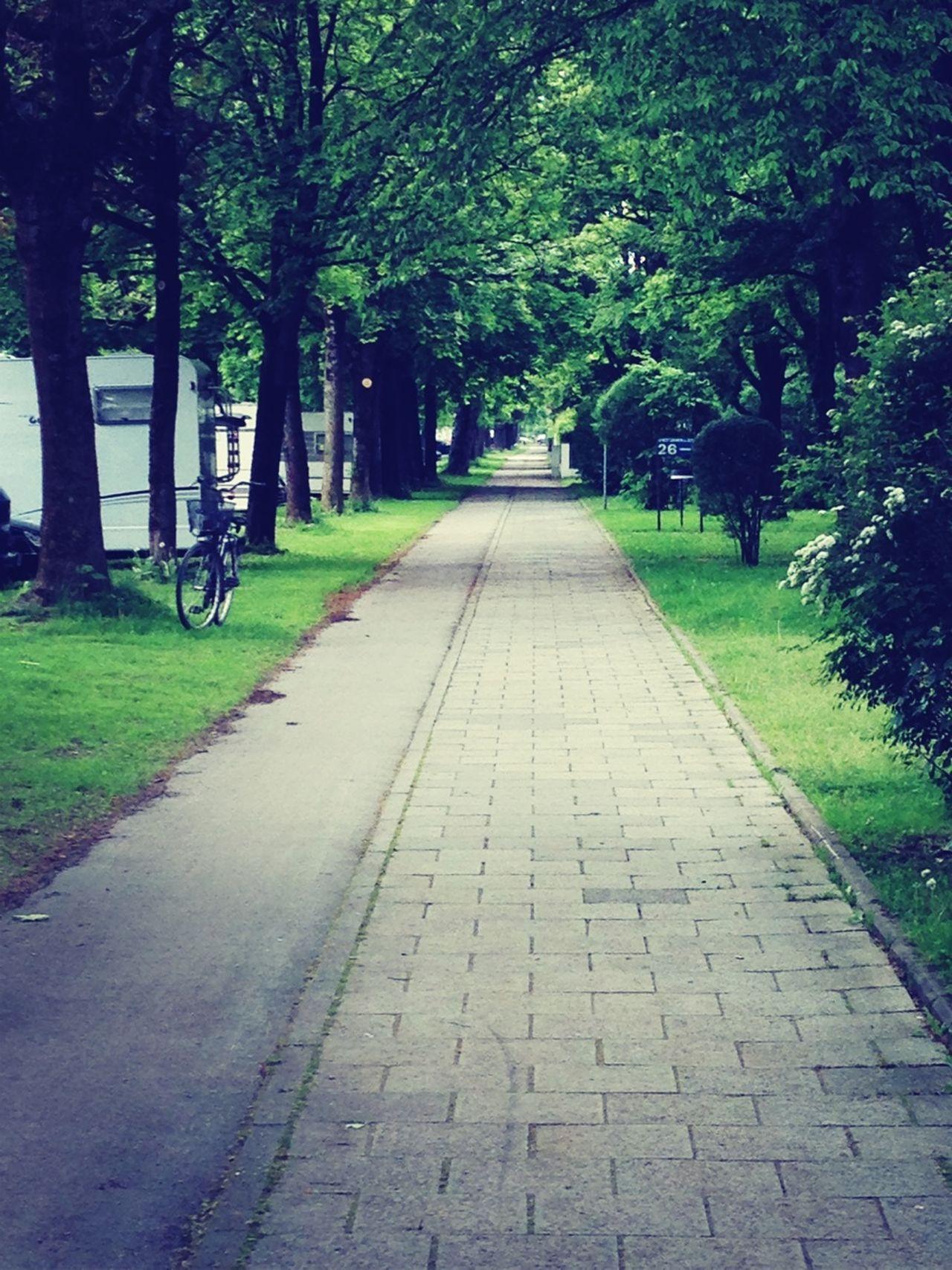 Osterwaldstrasse