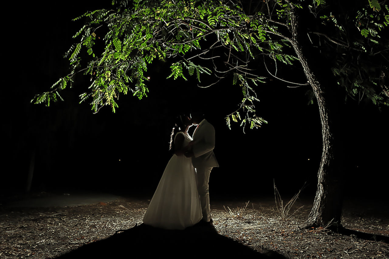 Beautifully Organized Tree Night Illuminated Black Background Outdoors Pepole Popular Eyestoriestudio Wedding Wedding Photography
