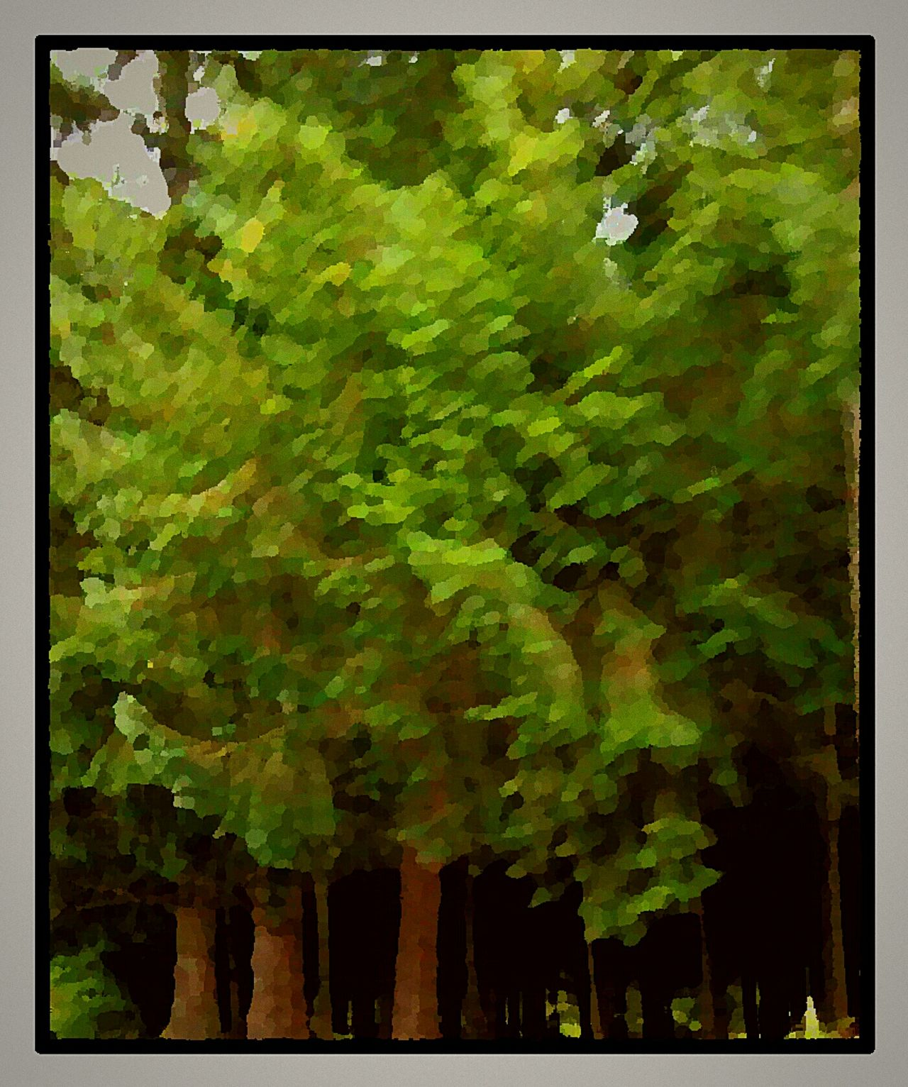 Image Diverse Picturing Individuality Oil Painting Reedited Beauty In Nature Beautiful Nature Beauty Made Beautiful Carries Picks Hanging Out Taking Photos Check This Out Hello World I Made This! Hand Made My Area  I💜oregon I❤oregon All Around Me TreePorn Tree_collection