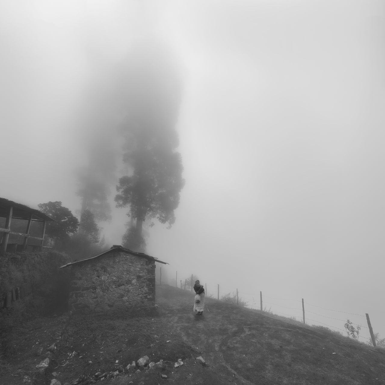 An old lady walking towards her home at the hill top area of kodaikanal on a misty afternoon. Atmospheric Mood Fog Foggy Hill Houses India Kodaikanal Lady Local Mist Monochrome My Winter Favorites Nature Old Age Old Lady Tamilnadu Travel Trees Walking Weather