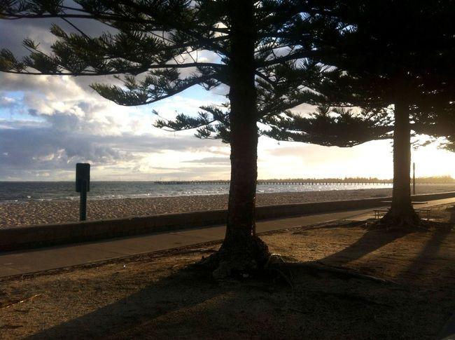 ⛅️ Beach Beautiful Beach Walk Photography