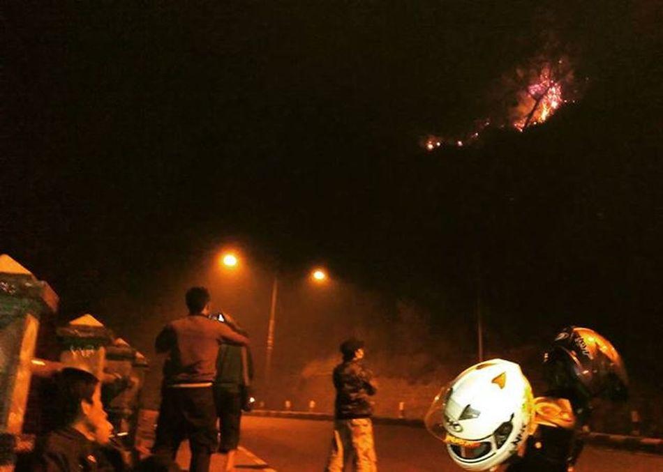 Perjuangan reporter bertaruh nyawa. Kebakaran Gn. Lawu menjalar hingga tepi jalan Solo-Madiun via Magetan, pada Senin (26/10). Sebagian jalan ditutup karena banyak material yang longsor dan pengendara dihimbau untuk berhati-hati saat melintas. (Ibnu/Surawarta)