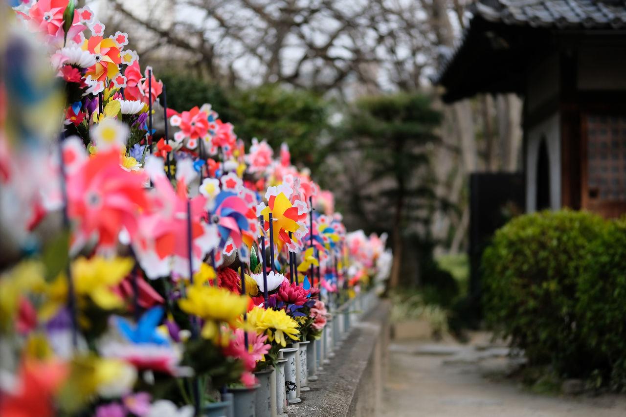 増上寺/Zojoji Temple Fujifilm FUJIFILM X-T2 Fujifilm_xseries Japan Japan Photography Japanese Culture Outdoors Temple Tokyo X-t2 Zojoji Zojojitemple お地蔵さん 地蔵 増上寺 風車 Windmills