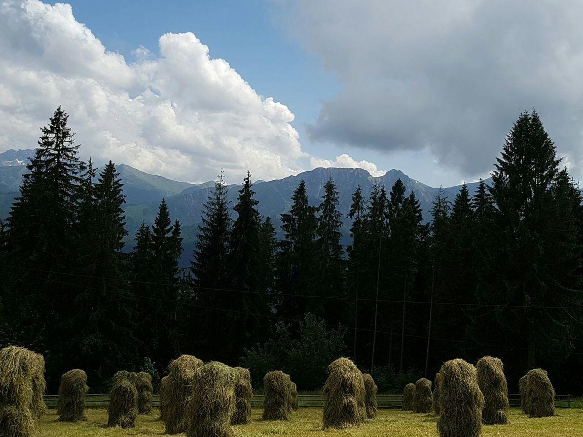 Mountains Mountain Mountain View Gubałówka Zakopane Poland Tatry Tatry Poland Tatra Mountains