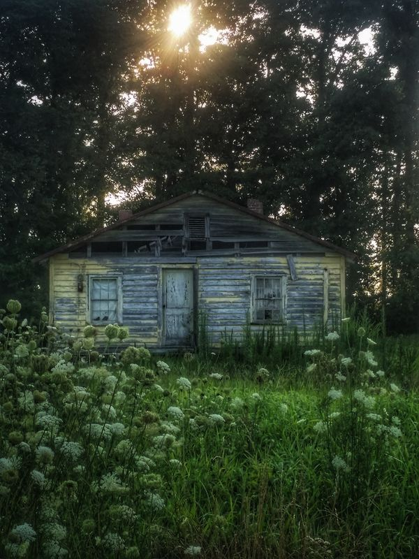 Abandoned sunshine...II House Green Color Building Exterior Architecture Nature Atmospheric Mood Moodjunky Roadside America Out And About Countryside Eye4photography  RuralExploration Abandoned Houses Hauntingly Beautiful Moody Monday Moodscapes EyeEmBestEdits Mood Captures Dilapidated Ominous Solitude Haunting  Low Angle View Getty Images Abandonedplaces