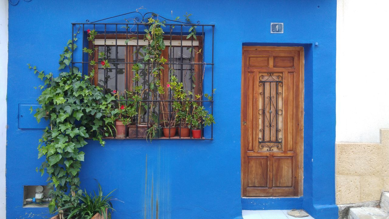 Architecture Battle Of The Cities Blue Blue Color Building Exterior Built Structure Day Denia Entryway Façade Green Color Growth Houseplant No People Plant Sky Street Photography Adapted To The City