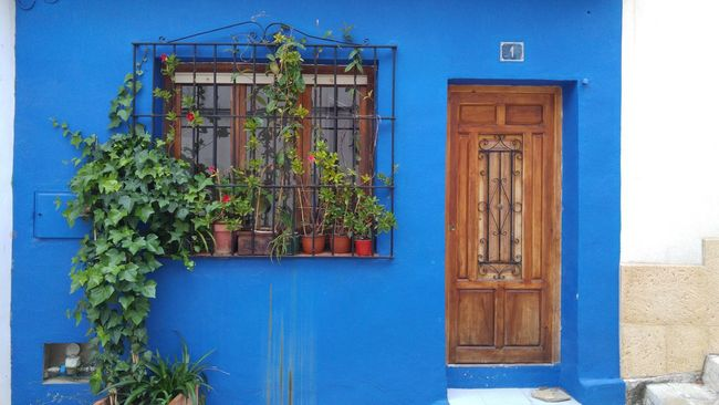 Architecture Battle Of The Cities Blue Blue Color Building Exterior Built Structure Day Denia Entryway Façade Green Color Growth Houseplant No People Plant Sky Street Photography