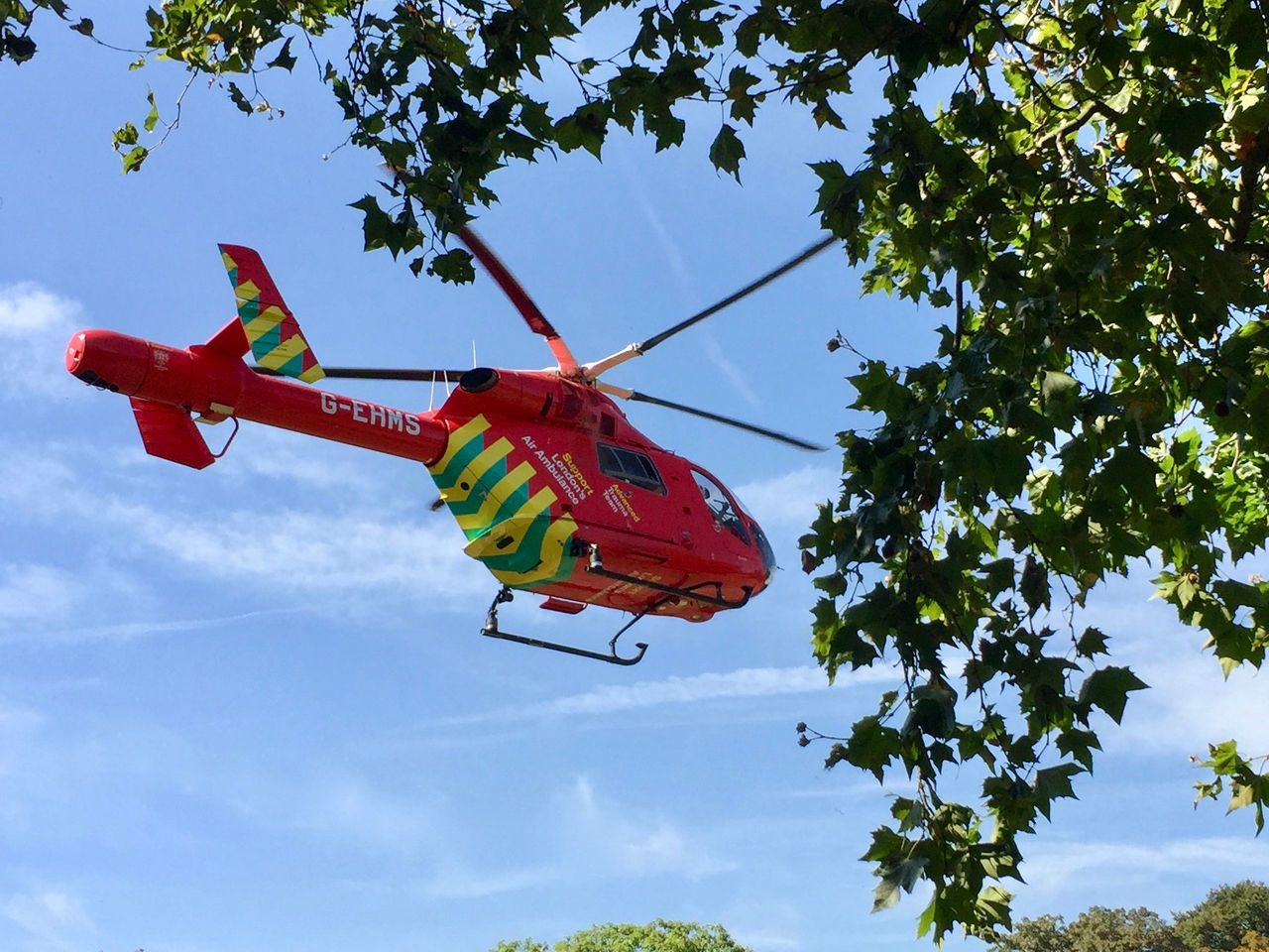 Branch Day Flying Green Color Helicopter Low Angle View No People Outdoors Red Sky Tree