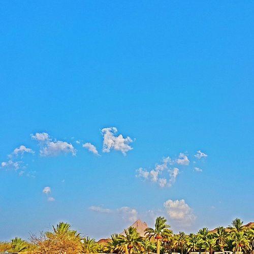 فإذا ظهرتِ فدنياي بها عبقٌ وإن اختفيتِ فلا حُلمٌ ولا أملُ دنياي دونكِ صحراءٌ بها عطشٌ وأنتِ وحدكِ فيها الغيثٌ ينهملُ غرد_بصورة سلطنة_عمان طبيعة Oman_photo Oman_photography Landscape