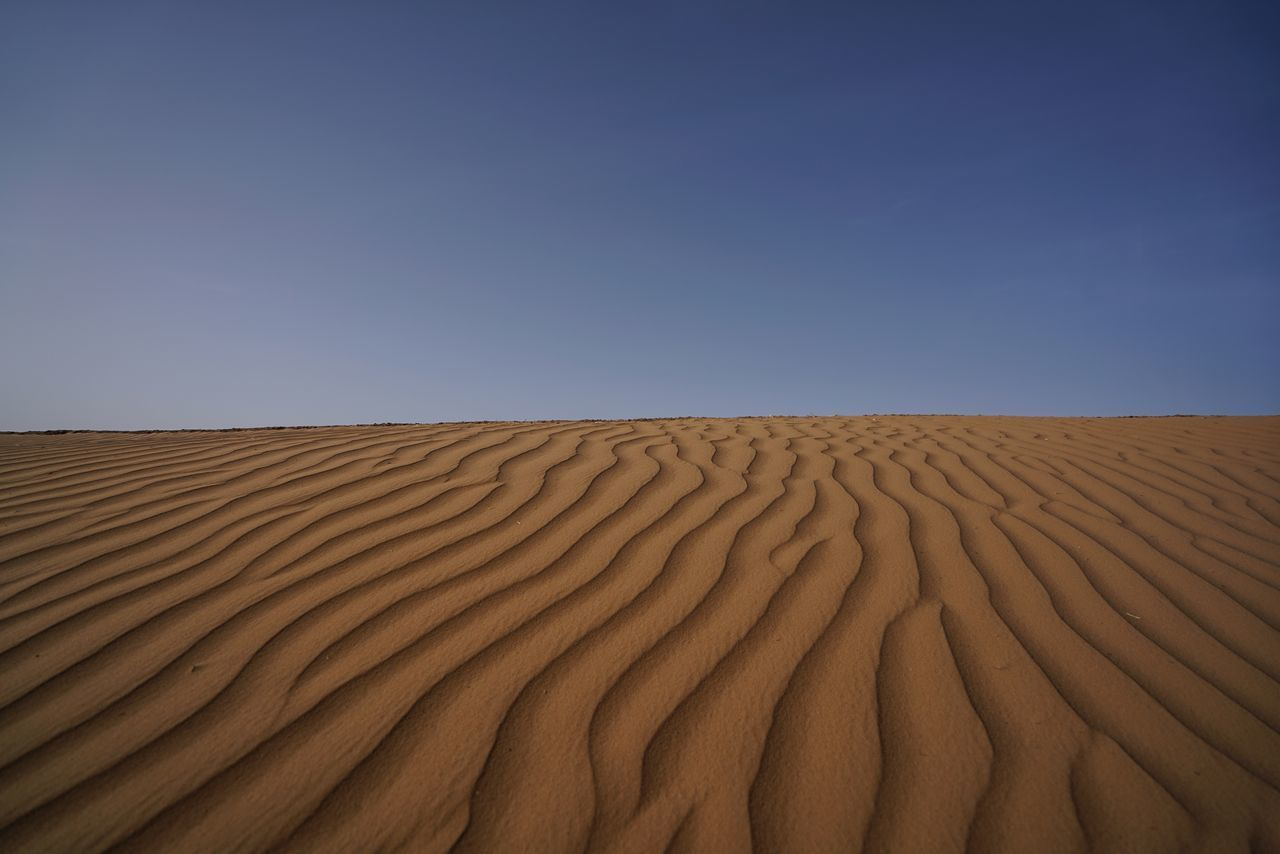 Morocco Photos Sahara Desert Pattern Wind Trace Arid Climate Landscape Sand Desert Outdoors Nature Scenics Day Sky Tranquility Summer Horizon Over Land Beauty In Nature Drought No People Sahara Morocco_travel Travel Clear Sky Backgrounds Streamzoofamily