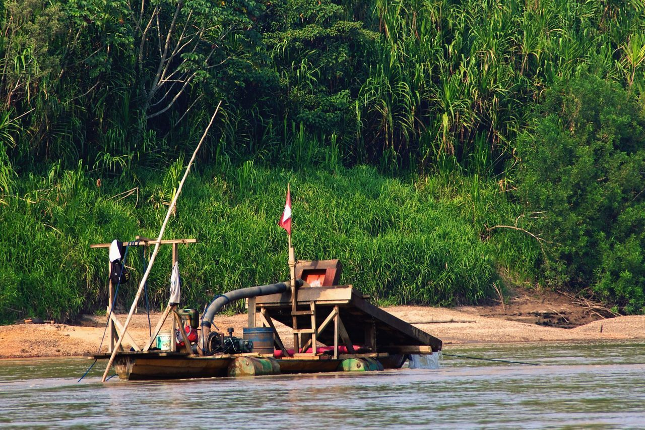 water, waterfront, tree, nautical vessel, boat, river, nature, day, outdoors, flag, no people, green color, growth, moored, riverbank, beauty in nature