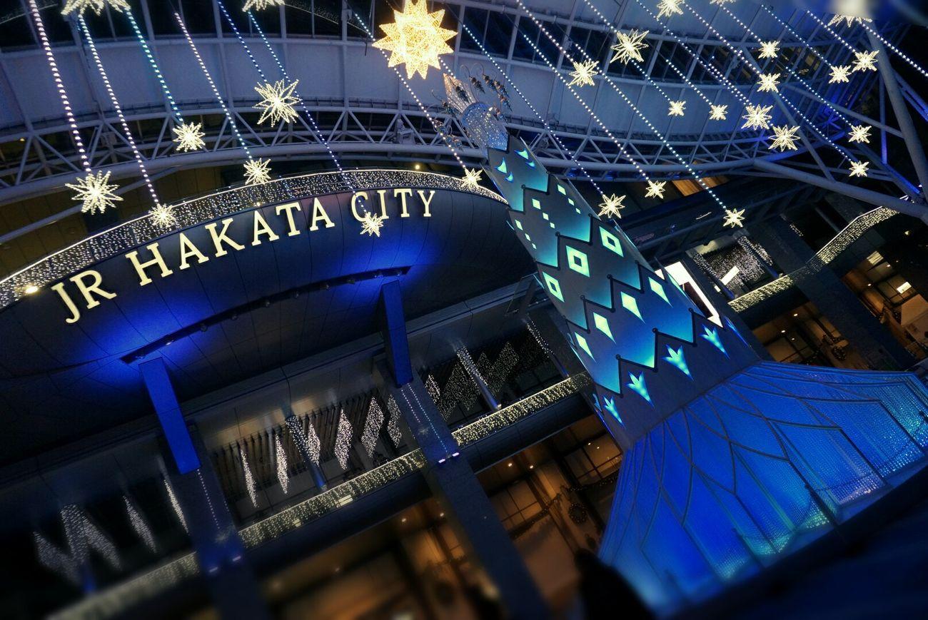 Illumination Fukuoka-shi Xmas Tree Train Station