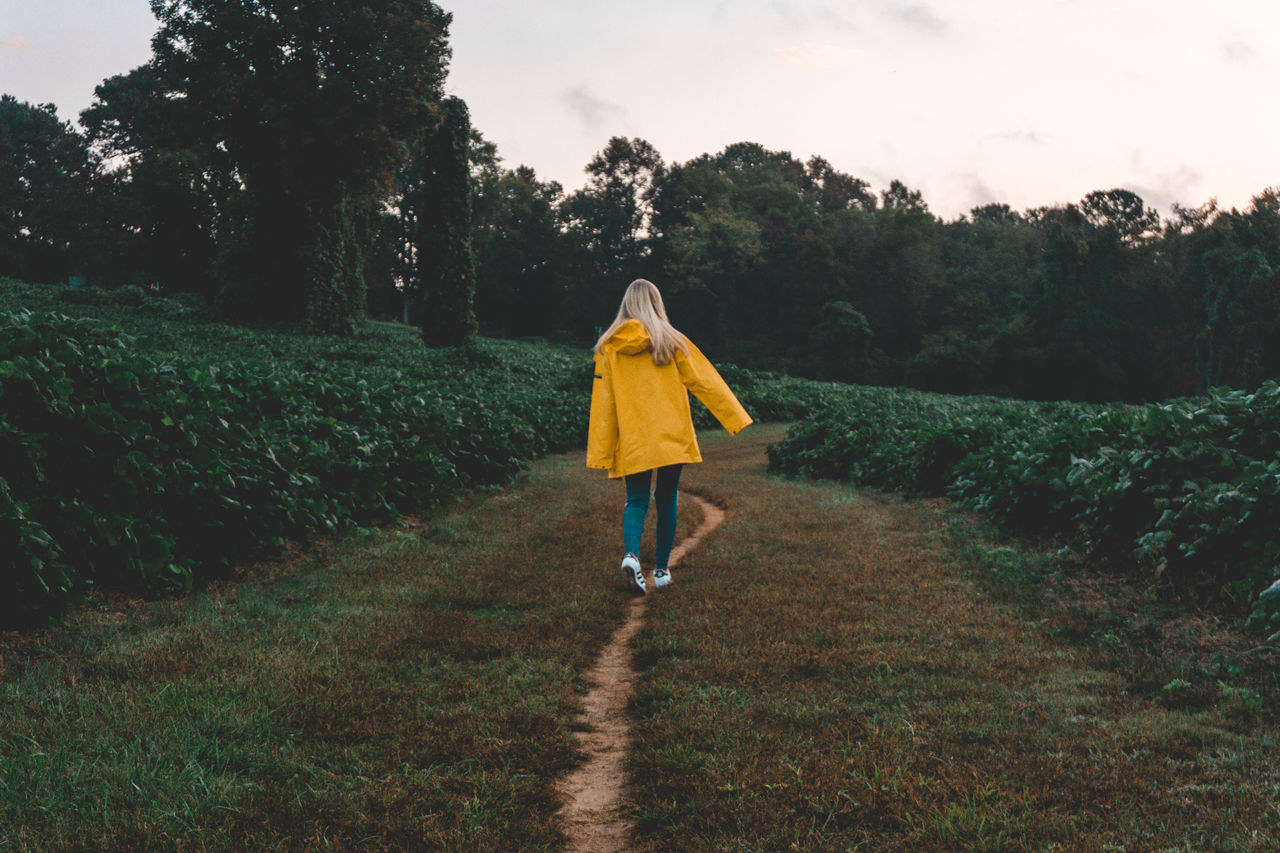 A Adults Only Beauty In Nature Fall Full Length Green One Person One Woman Only One Young Woman Only Only Women Outdoors Path Portrait Rain Raincoat Raincoats Rear View Rural Scene Spring Tree Walking Winter Yellow Yellow Raincoat Young Adult